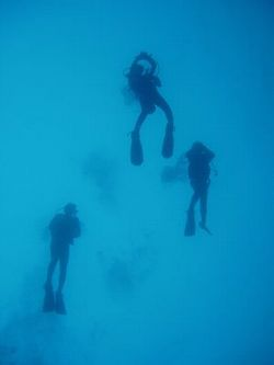 diving_team